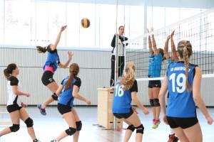 am Ball Andrea Liebäuser